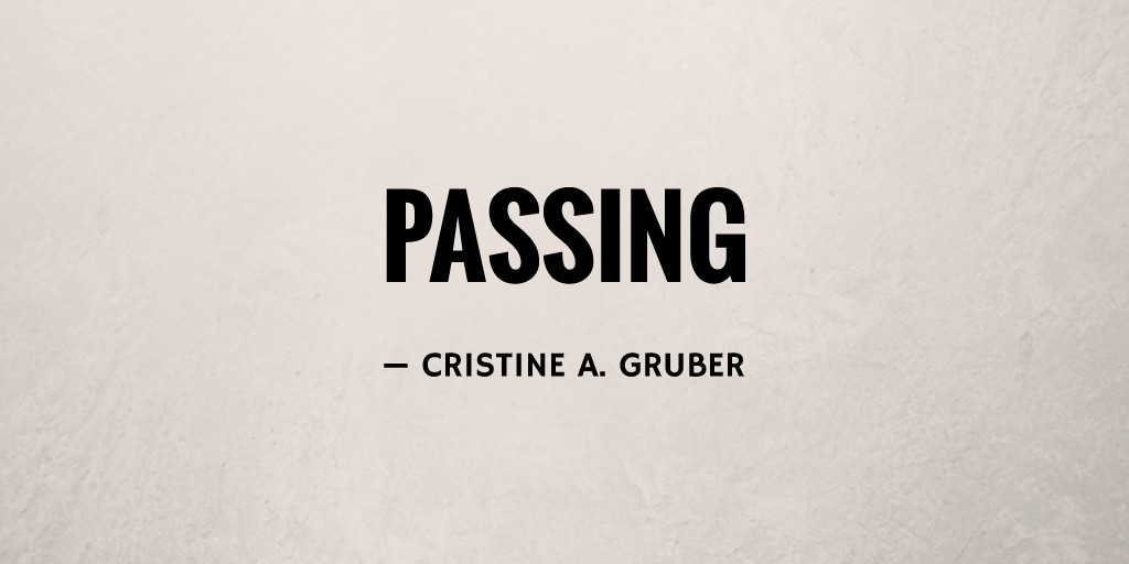 Passing by Cristine A. Gruber