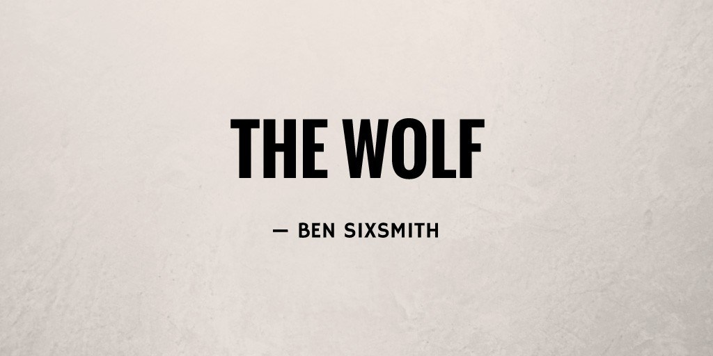 The Wolf by Ben Sixsmith