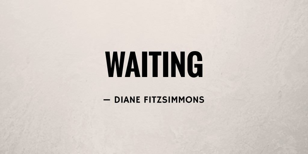 Waiting by Diane Fitzsimmons