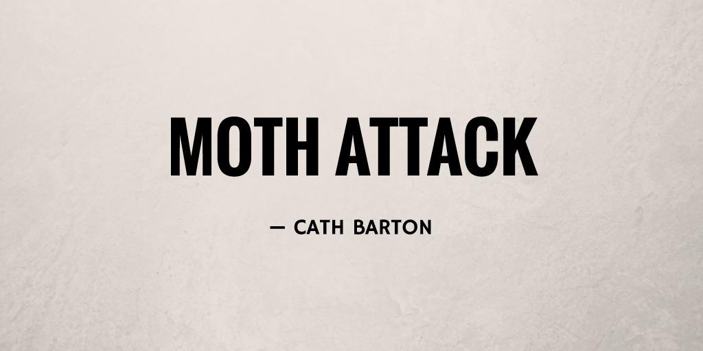 Moth Attack by Cath Barton