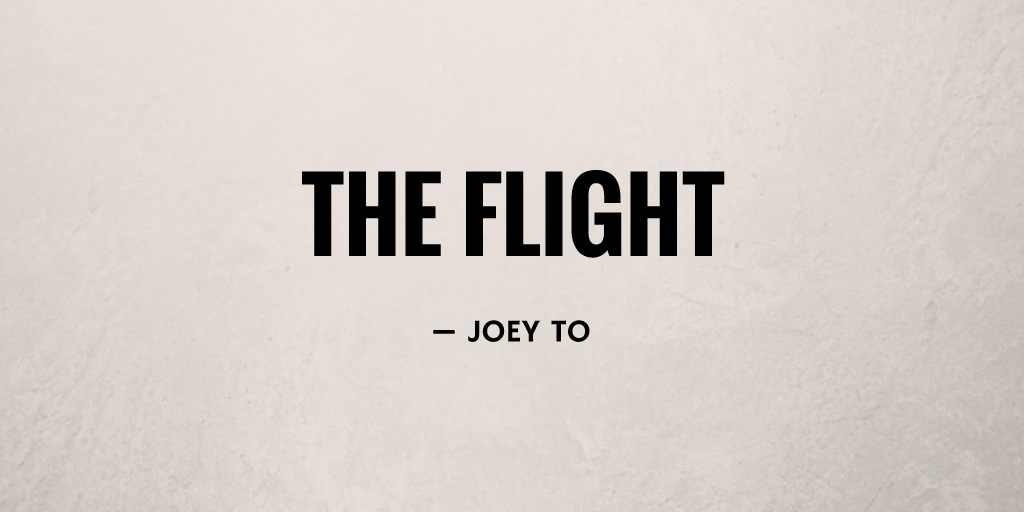 The Flight by Joey To