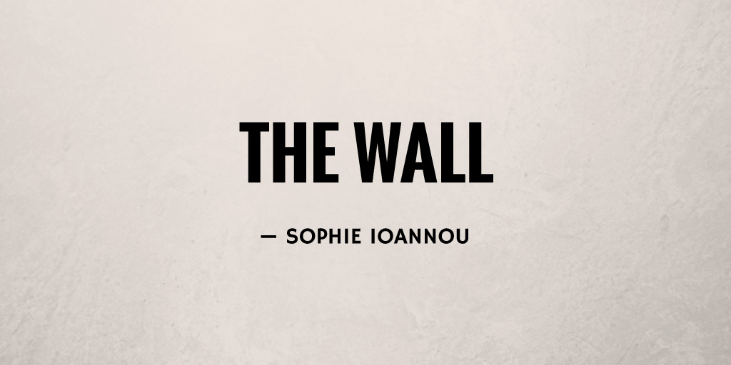 The Wall by Sophie Ioannou