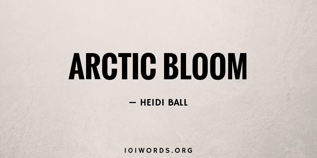 Arctic Bloom