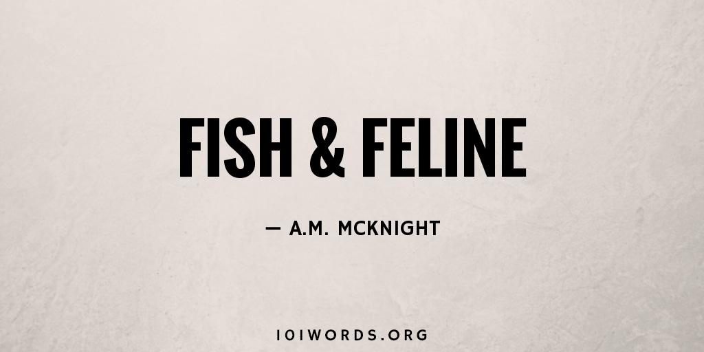 Fish & Feline
